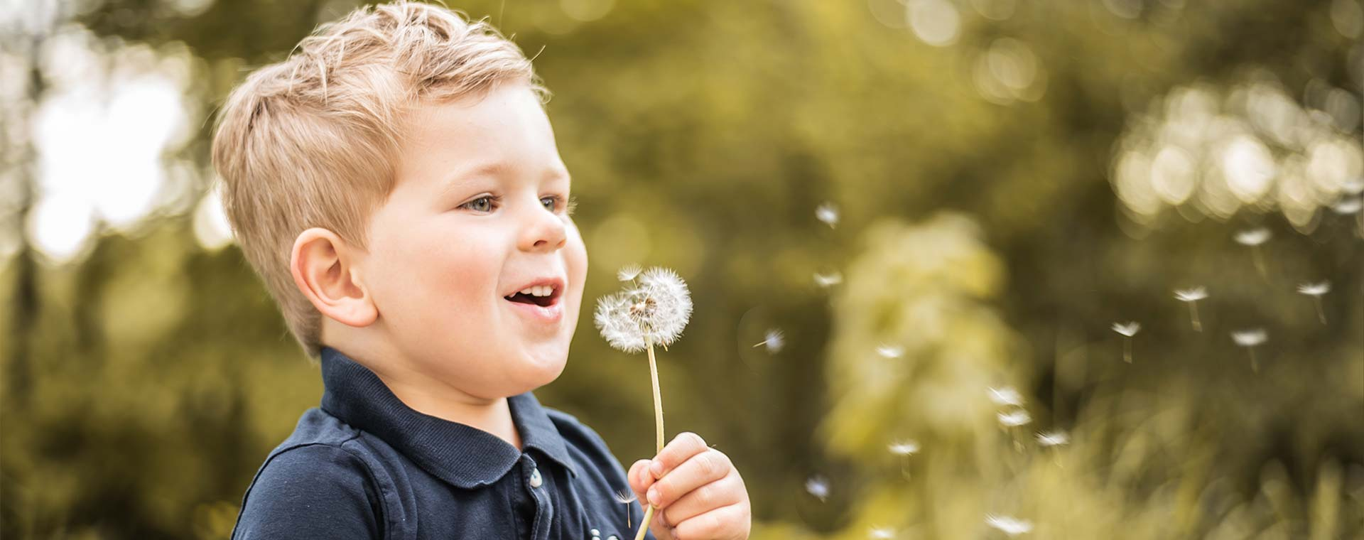 A toddler boy is standing in a field and holding a dandelion that has gone to seed. He blows gently on the dandelion and the seeds float away.