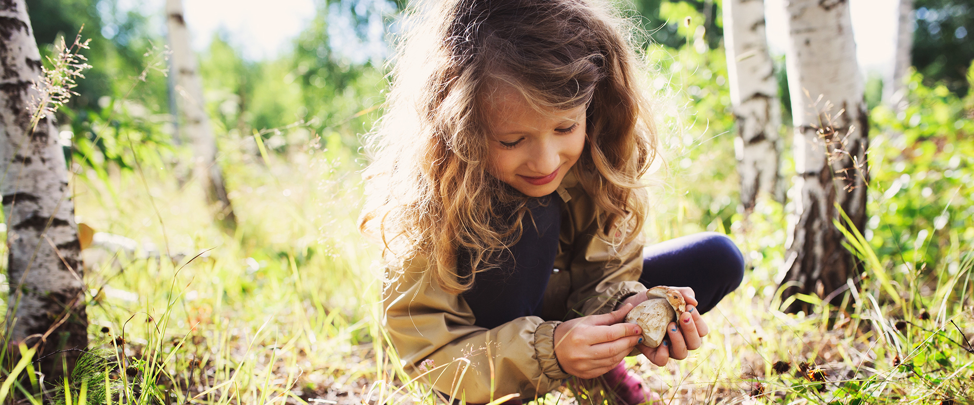 Girl picking wild mushrooms in a forest during summer.