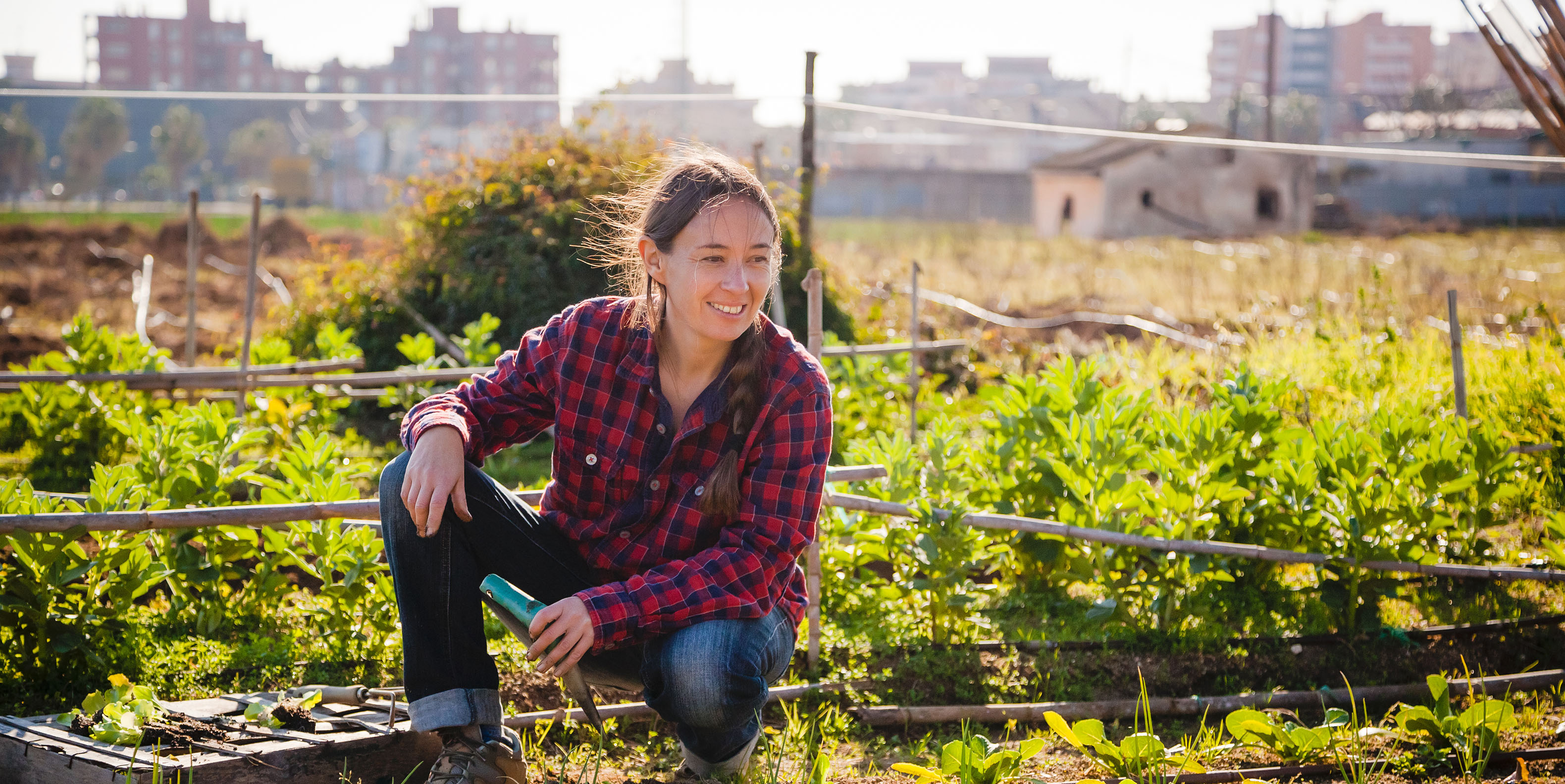 Harvesting opportunities for vulnerable women